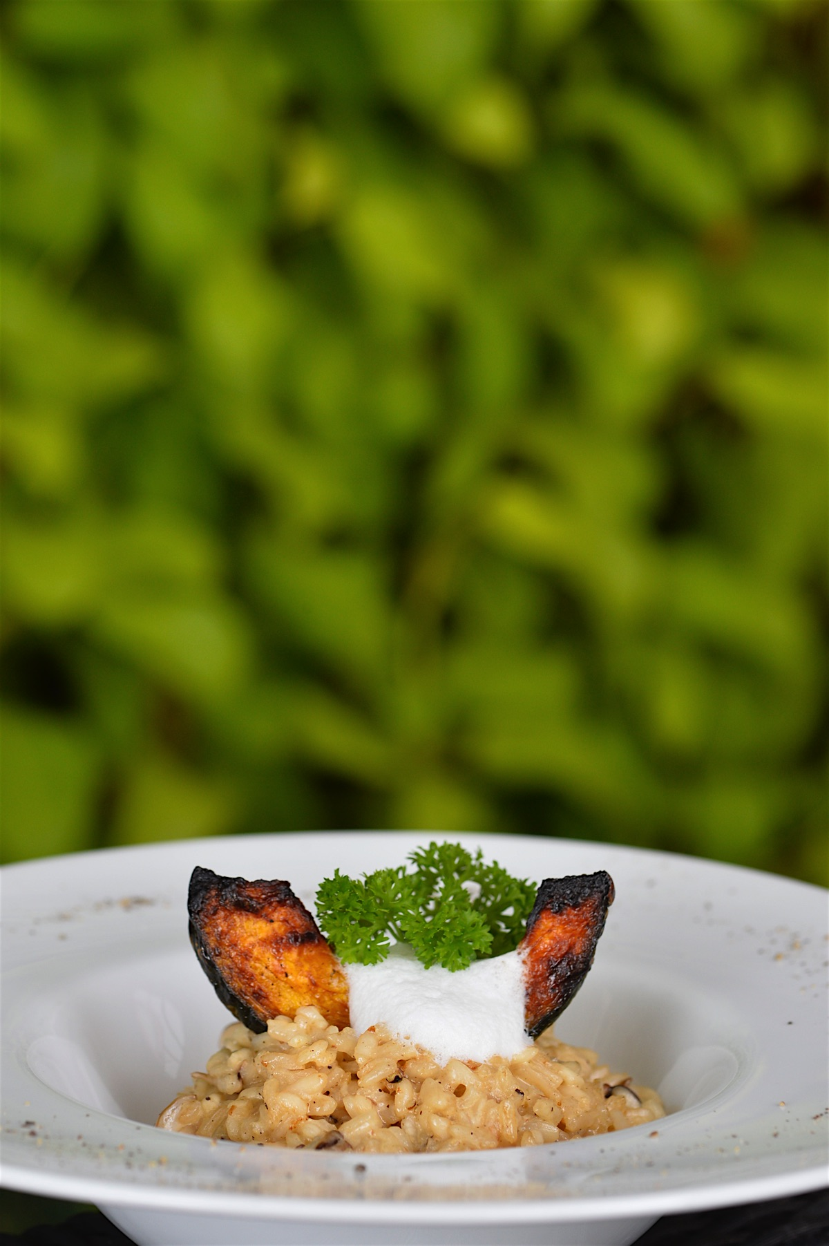 Fine dining davids kitchen 24 chiang mai luxurious for 24 star thai cuisine