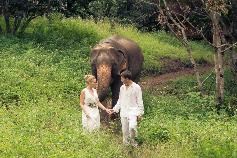 Chai Lai Orchid Elephant Weddings
